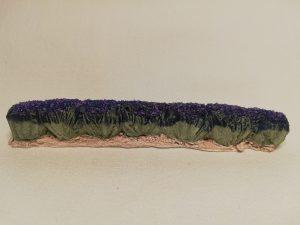 Rang de 7 pieds de lavandes  Prix: 3,5 €  Dim: 11,5 x 1,5 x 1,5 cm  Poids approximatif: 26 g